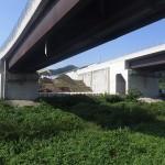 <p>橋脚側(右岸)<br /> 令和元年7月31日</p>