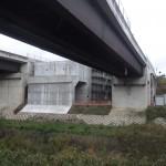 <p>橋脚側(右岸)<br /> 令和元年11月30日</p>