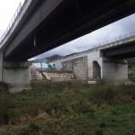 <p>橋脚側(左岸)<br /> 令和元年11月30日</p>